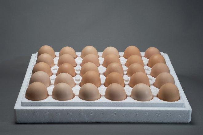 Eggs_small-small